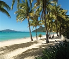 Super League Hamilton Island. Pain in Paradise
